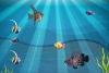 新版海底世界