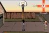 后院篮球赛
