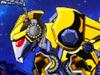 组装大黄蜂
