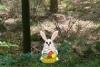 找到复活节小兔子