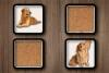 可爱狗狗记忆卡