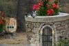 小猫水井逃生