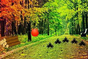 秋季林中逃脱