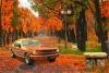 逃离秋季城市公园