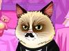 装扮生气的猫咪